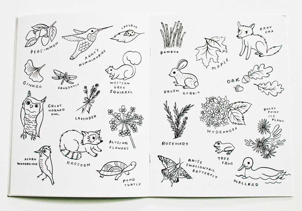 Bay Meadows Coloring Book © Susie Ghahremani / boygirlparty.com