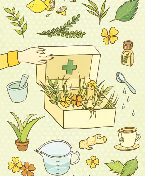 Herbal Remedies illustration for Abrams Books by Susie Ghahremani / boygirlparty.com