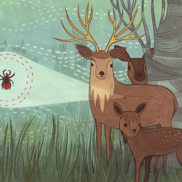 Deer Tick illustration for Rhode Island Monthly by Susie Ghahremani / boygirlparty.com