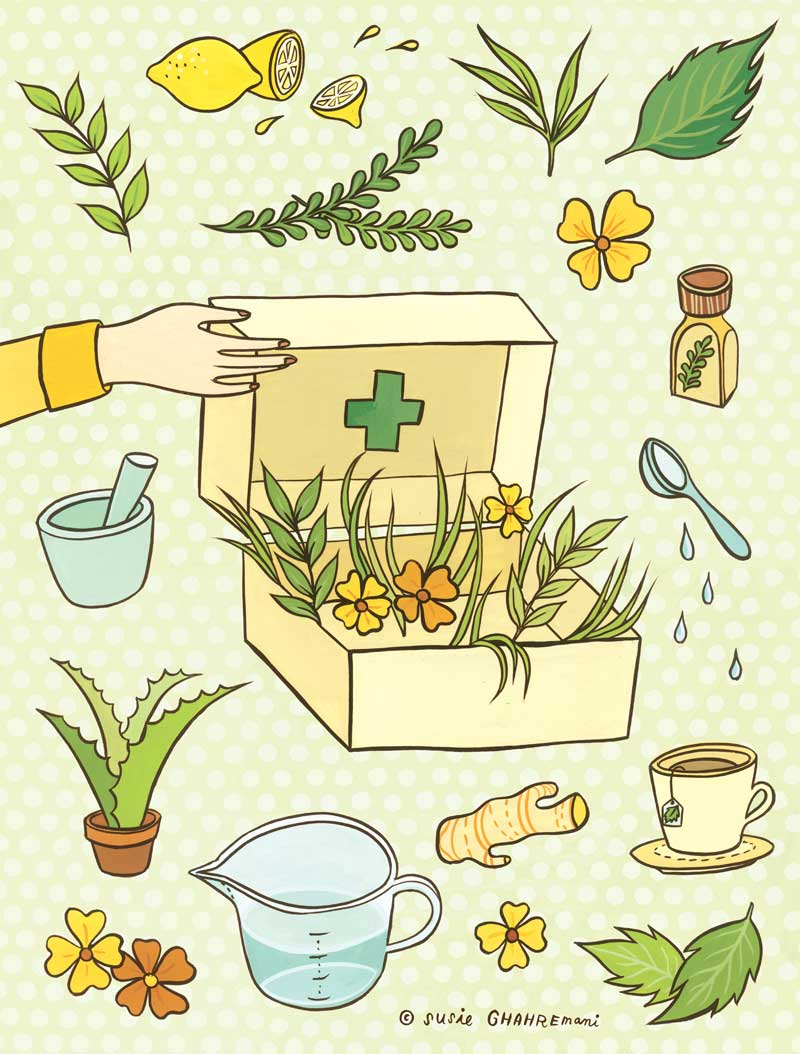 Herbal Remedies illustration for Abrams Books by Susie Ghahremani / boygirlparty.com