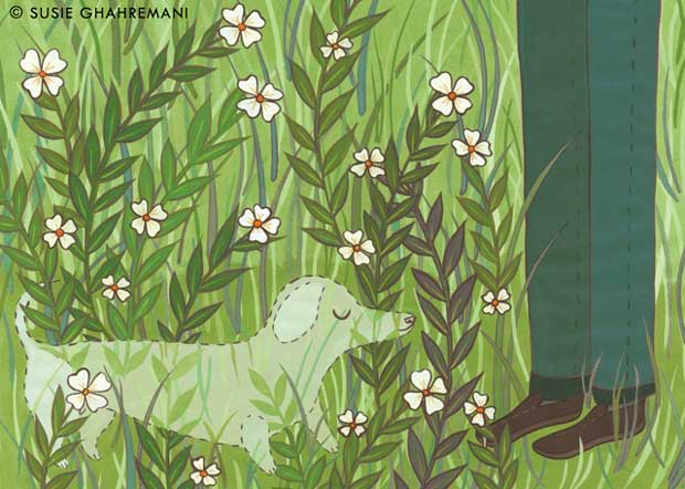 St. Louis Magazine illustration about memorial gardens for pets by Susie Ghahremani / boygirlparty.com