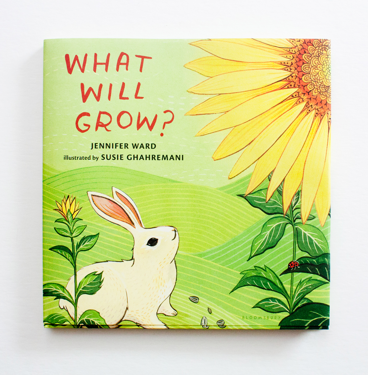 What Will Grow? illustrated by Susie Ghahremani / boygirlparty