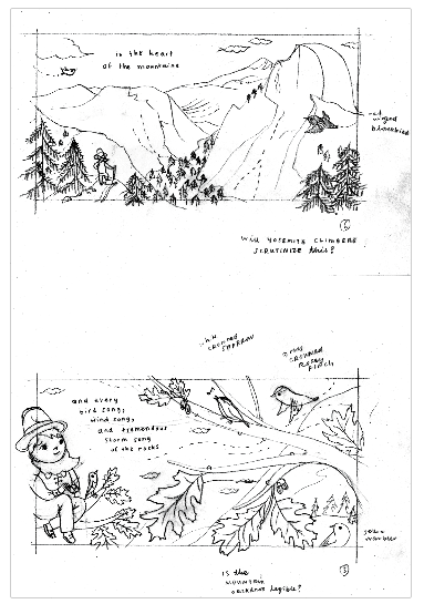 Little Muir sketches by Susie Ghahremani for Yosemite Conservancy